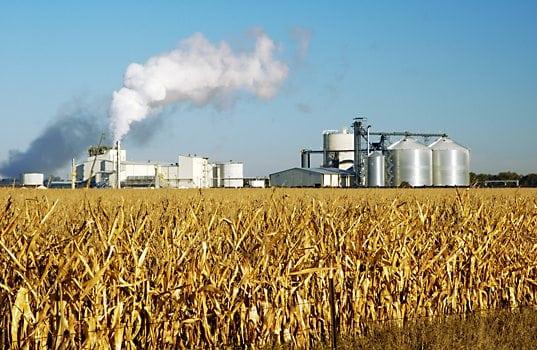 Farm, Ethanol Groups Urge President Trump to Allow Year-Round E15 Sales